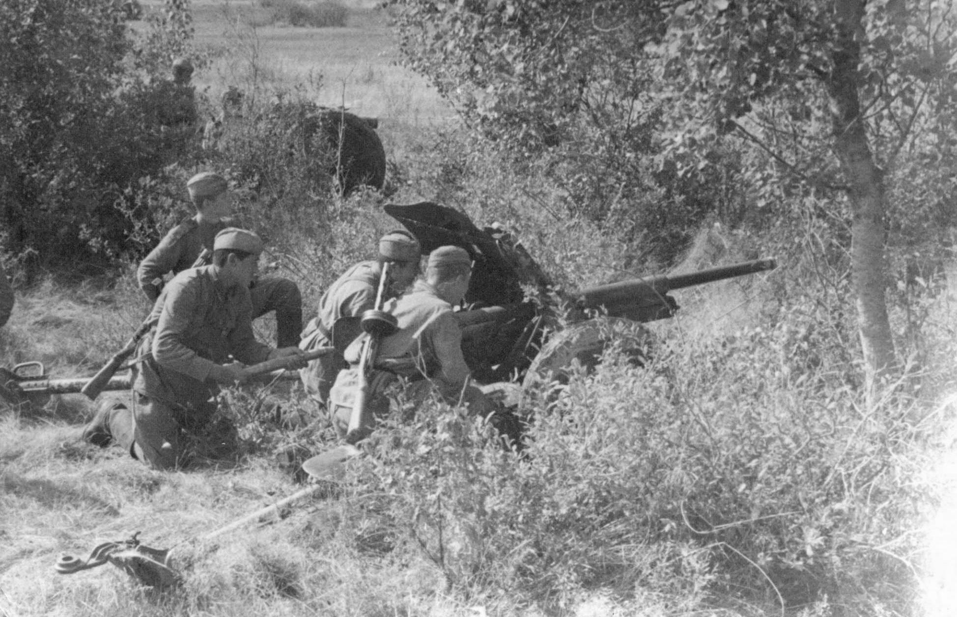Фото 45-мм противотанковая пушка, 1943 г.