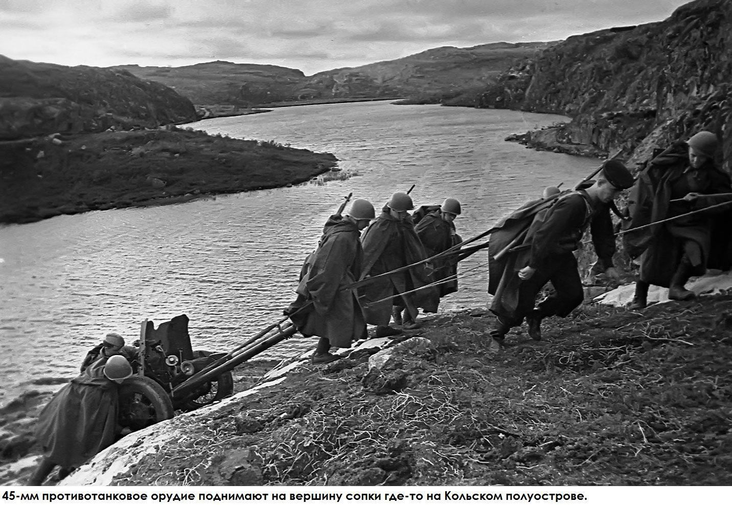 фото 45-мм противотанкового орудия
