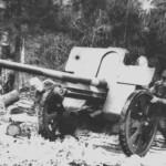 фотография пушки Ф-22