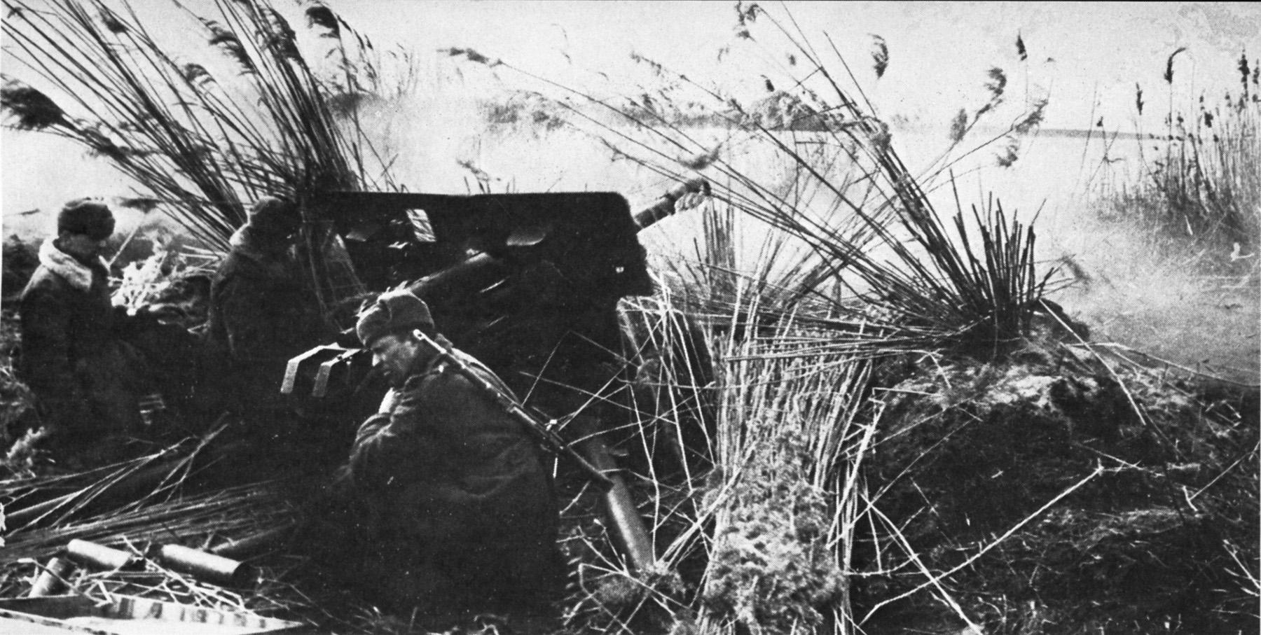 фотография выстрел зис 3