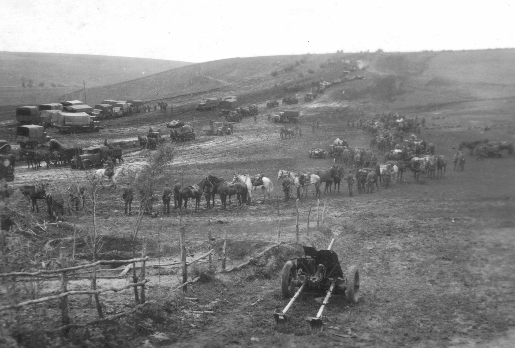 фотография 45-мм противотанкового орудия