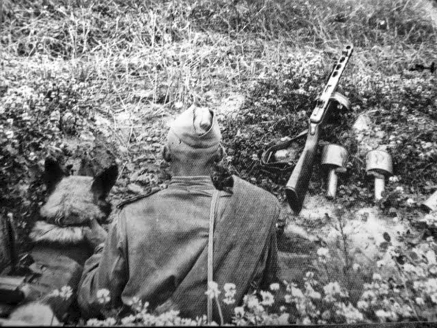 фотография с противотанковой гранатой